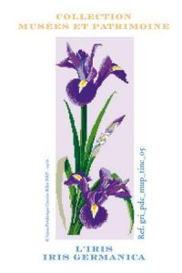 Iris to embroider in cross-stitch - Museums and Heritage Collection