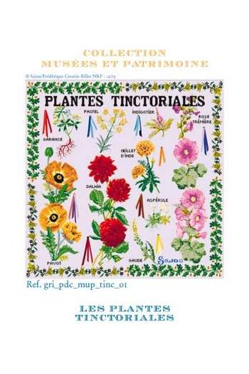 Kit de point de croix : plantes tinctoriales