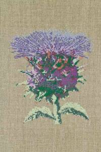 Cross stitch kit: Cardoon large model