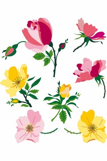 Sajou downloadable embroidery motifs A4 roses and hawthorns colour suggestions