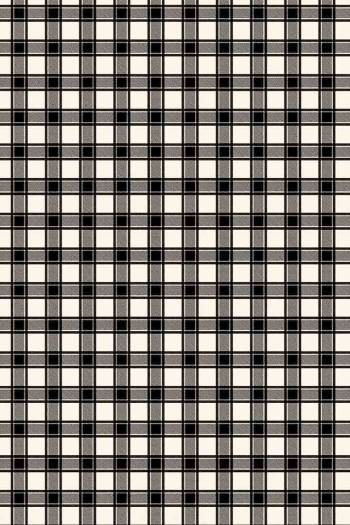 Swatch coated Sajou cotton fabric Travaux Manufacture black coordinate 2