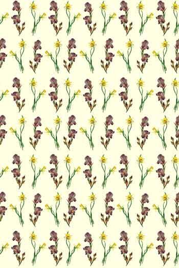 Swatch coated cotton fabric Irises and Narcissi main motif